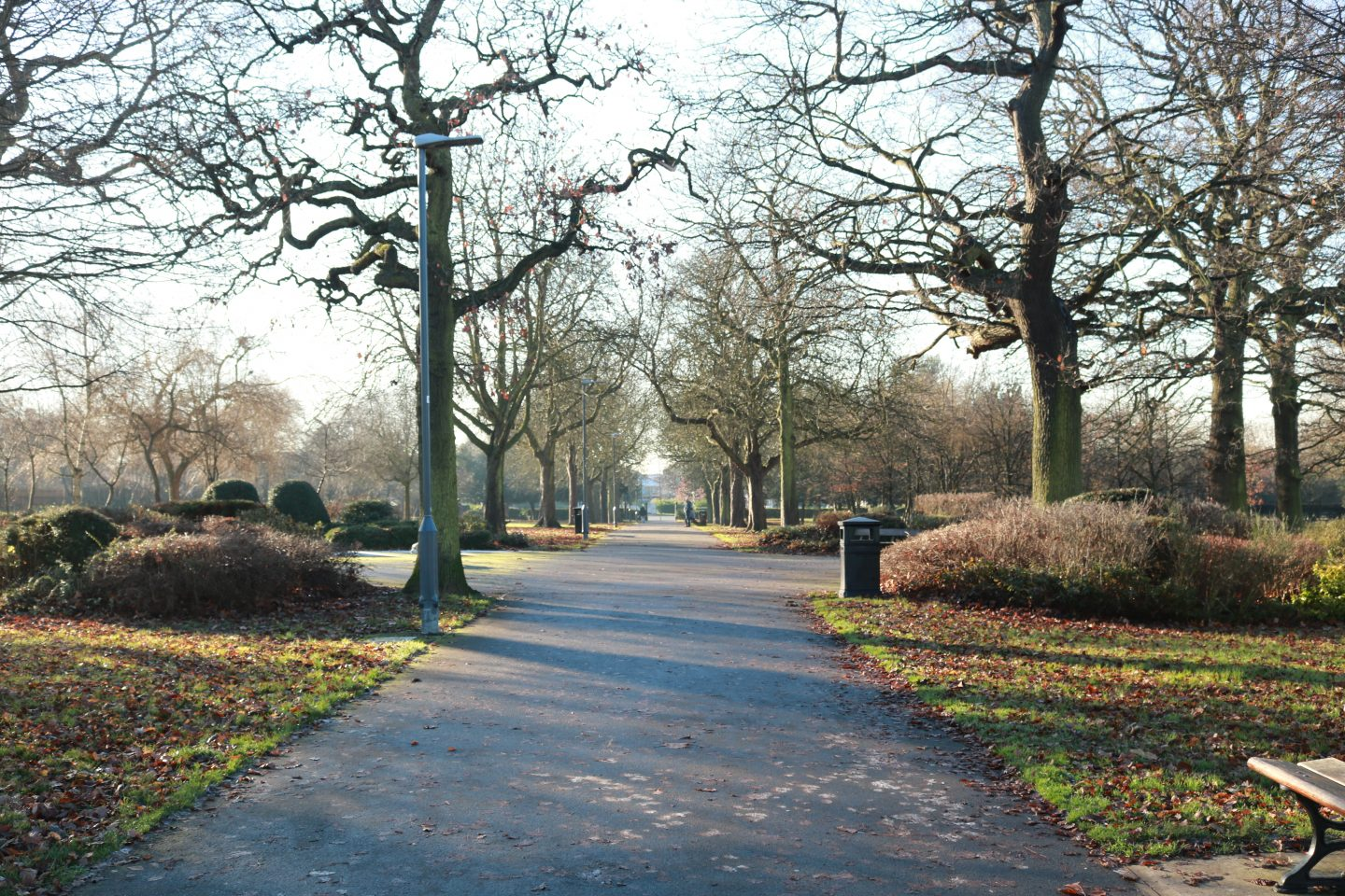london park at winter